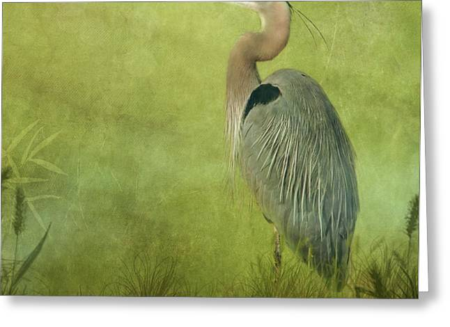 The Wait Greeting Card by Reflective Moment Photography And Digital Art Images