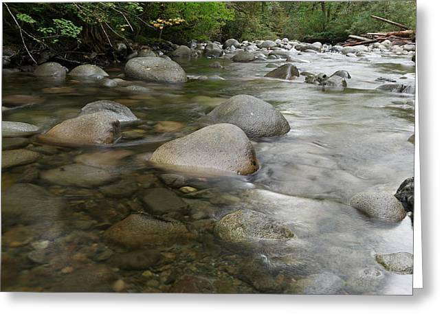 Moss Green Greeting Cards - The Wallace River Greeting Card by Jeff  Swan