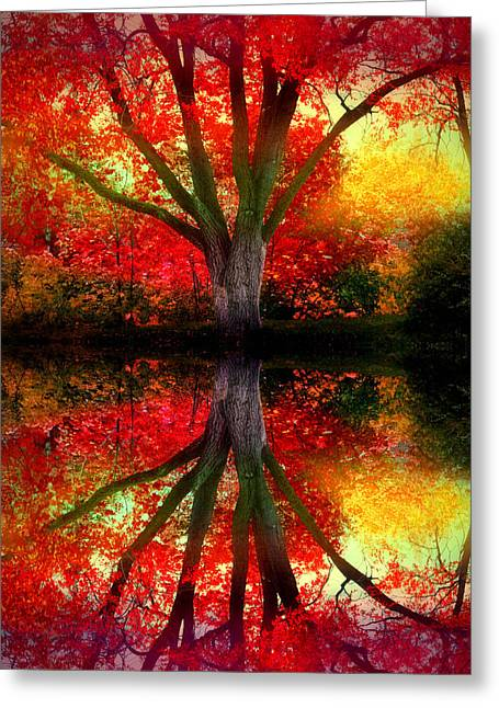 The Warm Dreams Of Autumn Greeting Card by Tara Turner