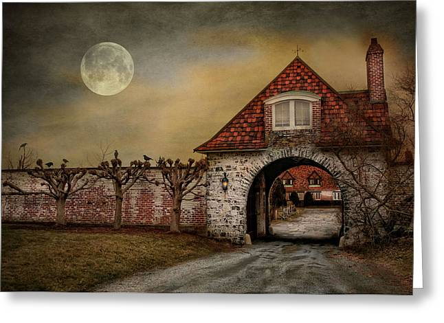 Bewitched Greeting Cards - The Watcher Greeting Card by Robin-lee Vieira