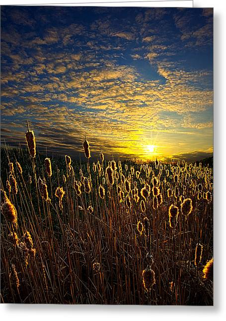 Myhorizonart Greeting Cards - The Watchers Greeting Card by Phil Koch