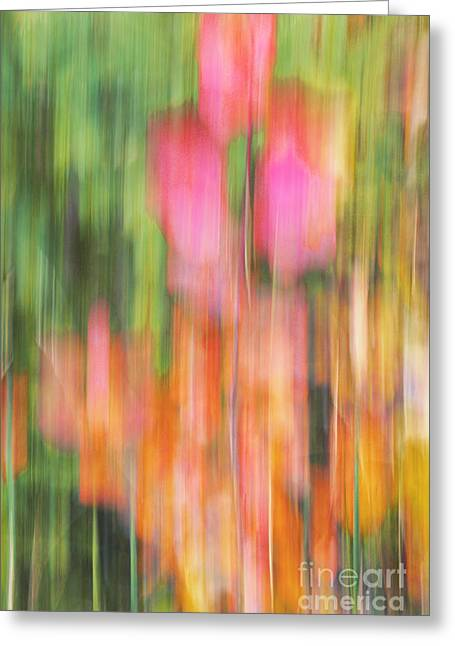 Impressionist Photography Greeting Cards - The Watercolor garden Greeting Card by Aimelle