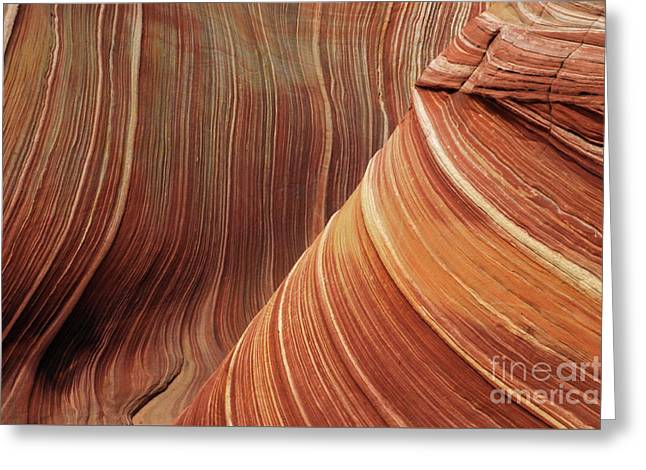 Geology Photographs Greeting Cards - The Wave  Artistry In Stone Greeting Card by Bob Christopher