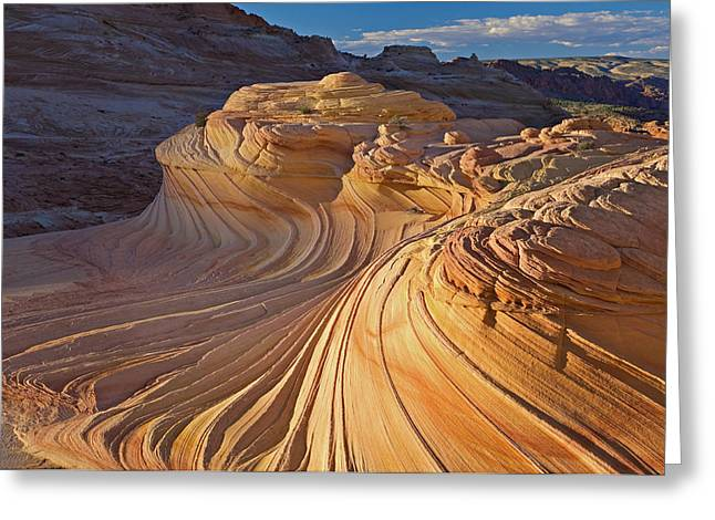 Paria Greeting Cards - The Wave Coyote Buttes Greeting Card by Dean Pennala