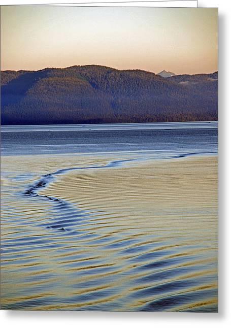 The Waves Greeting Card by Carol  Eliassen