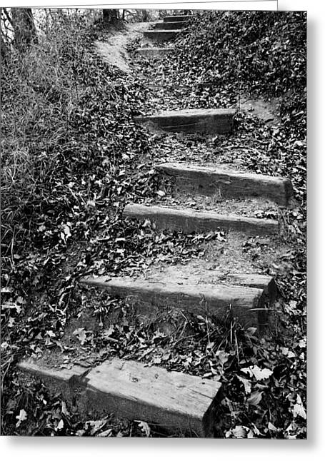 Wooden Stairs Greeting Cards - The Way Forward Greeting Card by Donald  Erickson