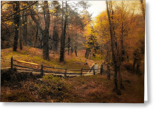Wooden Fence Greeting Cards - The Way Greeting Card by Jessica Jenney