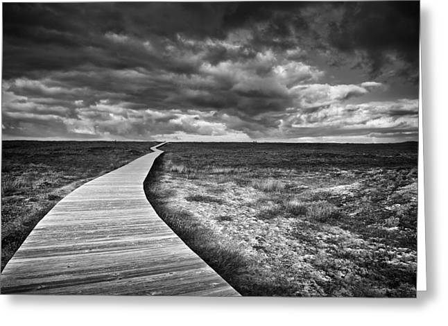 Lanscape Greeting Cards - The Way Greeting Card by Santiago Pascual Buye