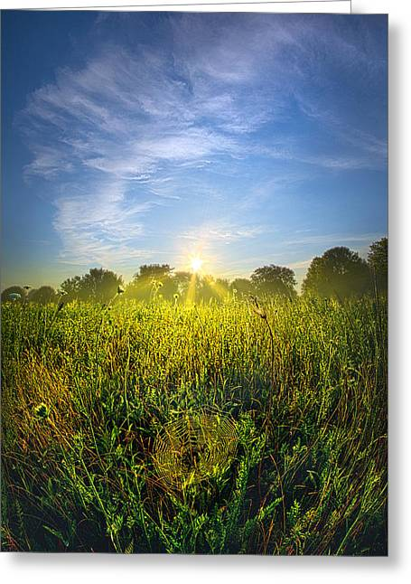 Green Leafs Greeting Cards - The Web Greeting Card by Phil Koch