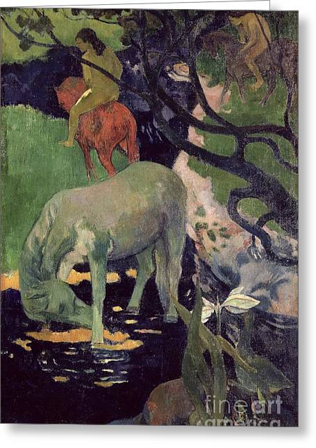 Cheval Greeting Cards - The White Horse Greeting Card by Paul Gauguin