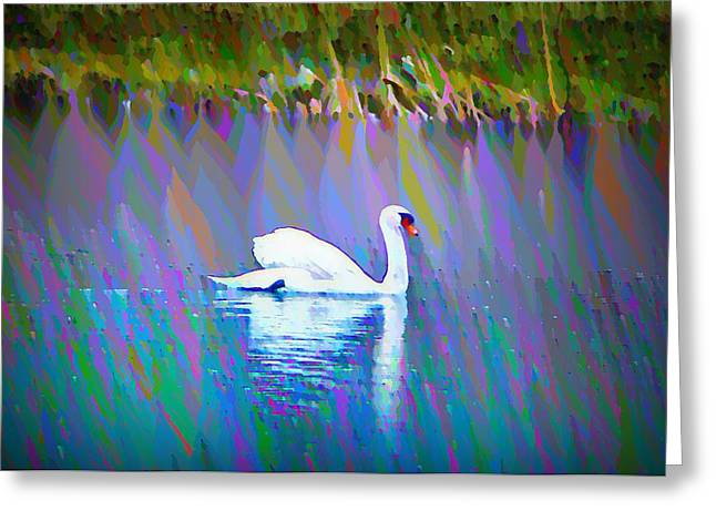 Stream Digital Greeting Cards - The White Swan Greeting Card by Bill Cannon