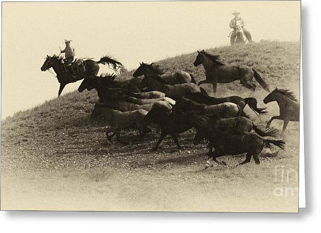 Bucking Horses Greeting Cards - The Wild Bunch 3 Greeting Card by Bob Christopher