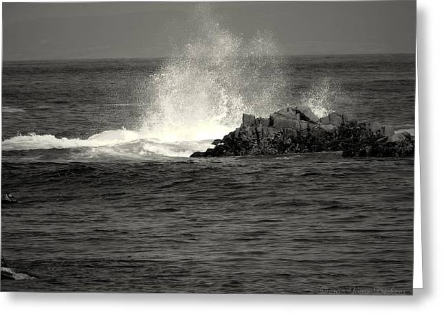 Pacific Ocean Prints Greeting Cards - The Wild Pacific In Black And White Two Greeting Card by Joyce Dickens