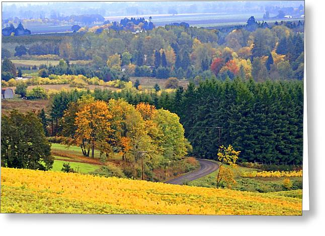 Grapevine Greeting Cards - The Willamette Valley Greeting Card by Margaret Hood