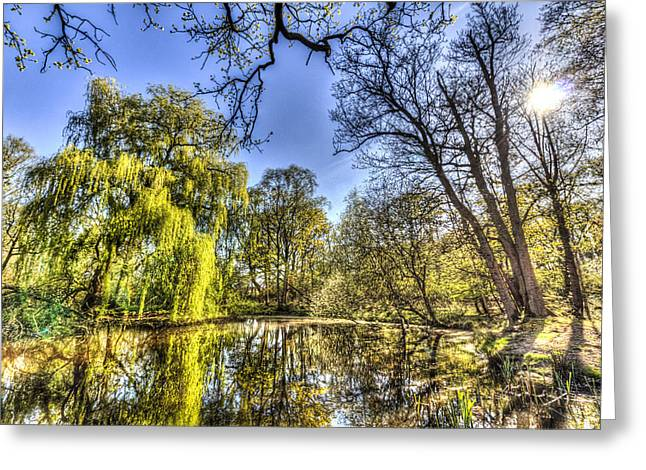 Reflecting Water Greeting Cards - The Willow Tree Pond Greeting Card by David Pyatt