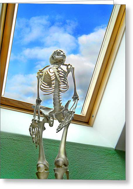The Window Greeting Card by Robert Lacy
