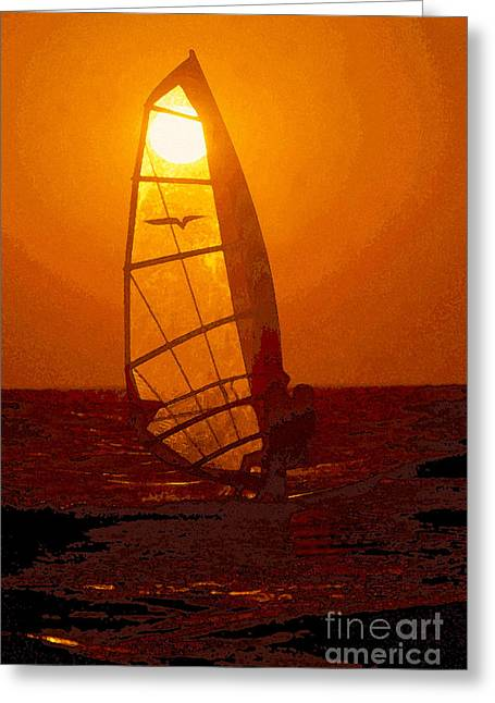 Windsurfer Greeting Cards - The Windsurfer Greeting Card by David Lee Thompson