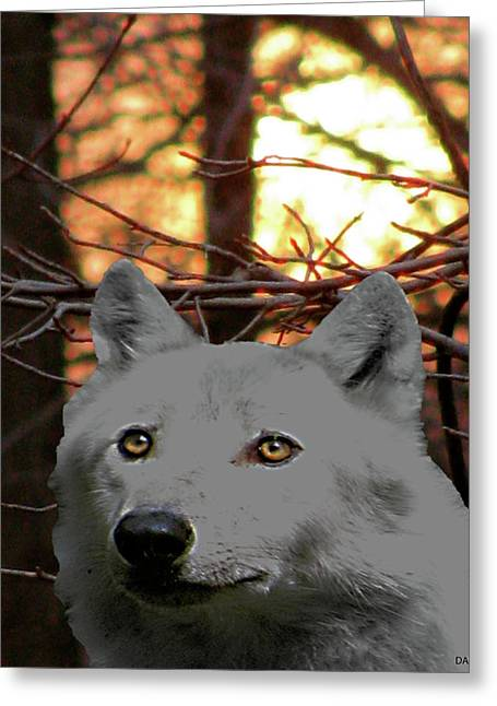 Love The Animal Mixed Media Greeting Cards - The Wolf Glows Within Greeting Card by Debra     Vatalaro