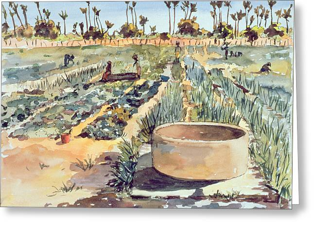 Senegal Greeting Cards - The Womes garden  Senegal West Africa Greeting Card by Tilly Willis