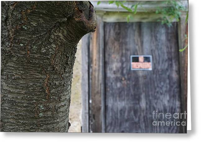 Aperture Greeting Cards - The Wooden Door Greeting Card by Peter Motta