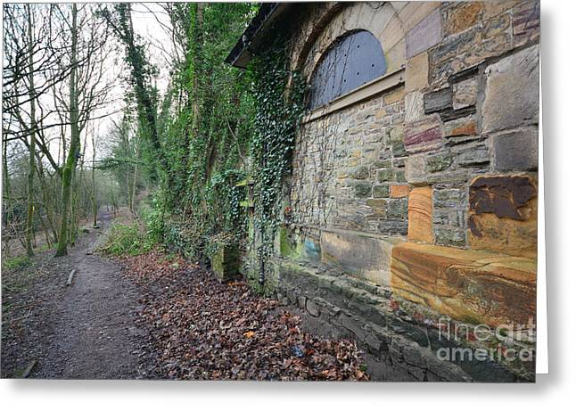 The Woodland Walk Greeting Card by Stephen Smith