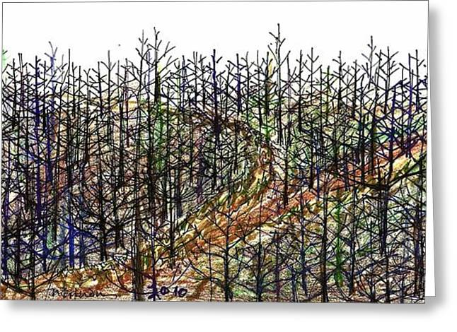Winter Roads Drawings Greeting Cards - The Woods Greeting Card by Tex Norman