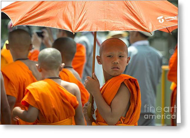 Buddhist Monks Greeting Cards - The Young Monk  Greeting Card by Rob Hawkins