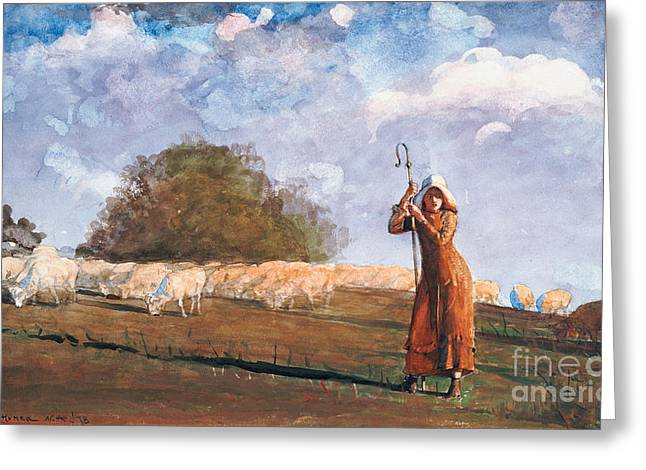 Young Lady Greeting Cards - The Young Shepherdess Greeting Card by Winslow Homer