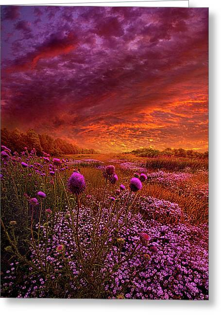 Then Ever Been Lifted Before Greeting Card by Phil Koch