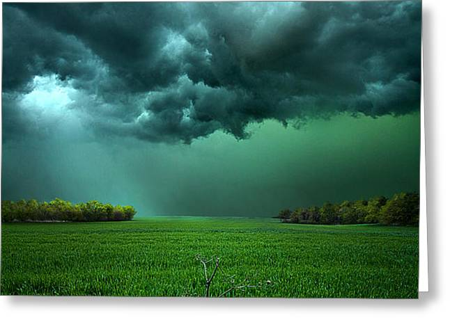 There Came a WInd Greeting Card by Phil Koch