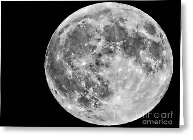 Cut-outs Greeting Cards - There Is Life On The Moon Greeting Card by Marcia Lee Jones