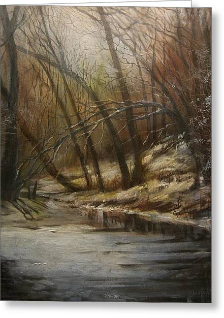 Snow Scene Landscape Greeting Cards - Thin Ice Greeting Card by Tom Shropshire