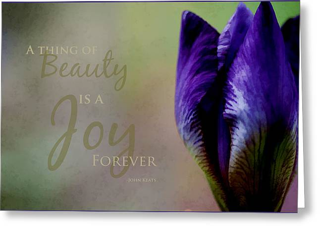 Thing Of Beauty Greeting Card by Bonnie Bruno