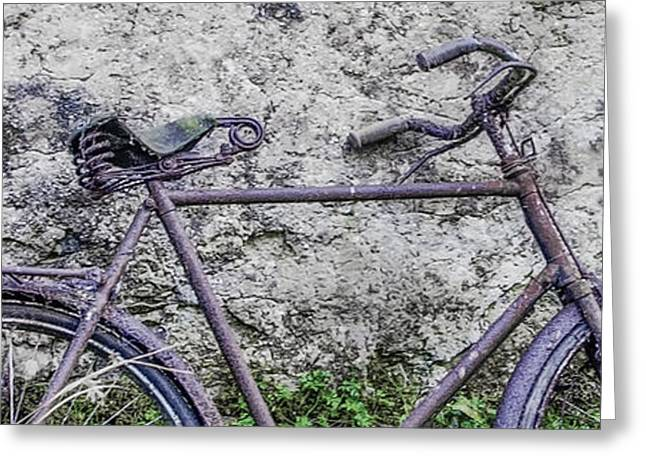 Sligo Greeting Cards - This Bike Has Seen Better Days Greeting Card by Bill Cannon