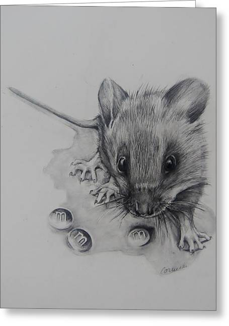 Hamster Drawings Greeting Cards - This is a Great Find  Greeting Card by Jean Cormier