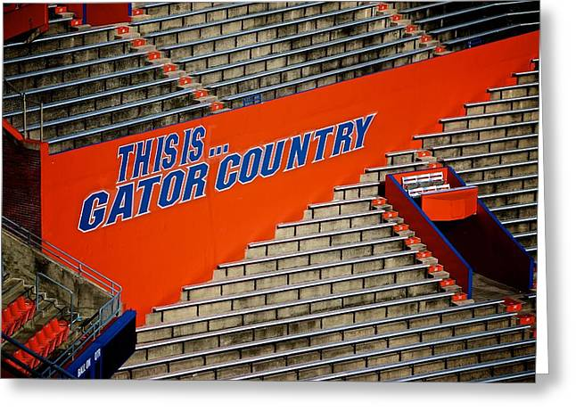 Sec Greeting Cards - This Is Gator Country  Greeting Card by Jackie Dorr