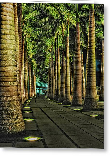 Fullerton Greeting Cards - This is Singapore No. 20 - Palm Row Greeting Card by Paul W Sharpe Aka Wizard of Wonders