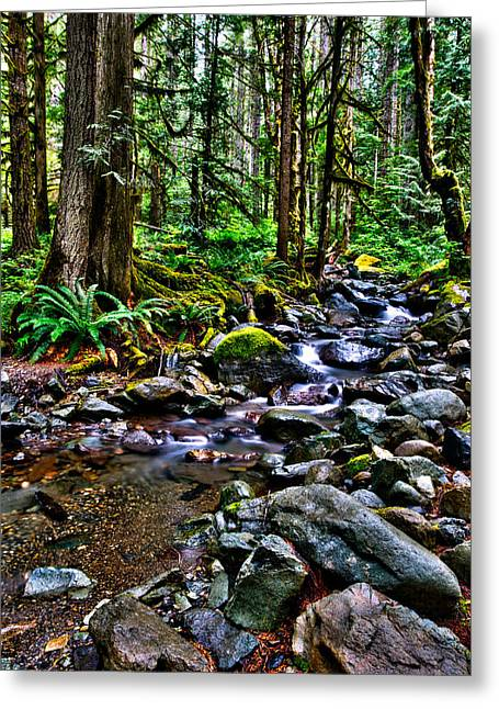 Stream Digital Greeting Cards - This is Washington State 1A - The stream at Nooksack Falls Greeting Card by Paul W Sharpe Aka Wizard of Wonders