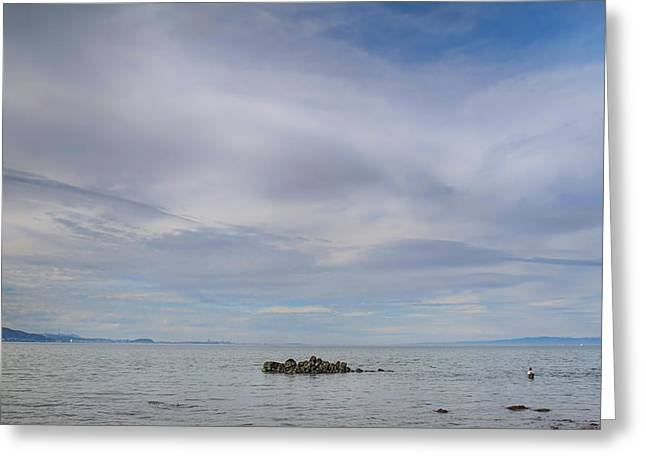 San Francisco Bay Greeting Cards - This Vast Silence Greeting Card by Laurie Search