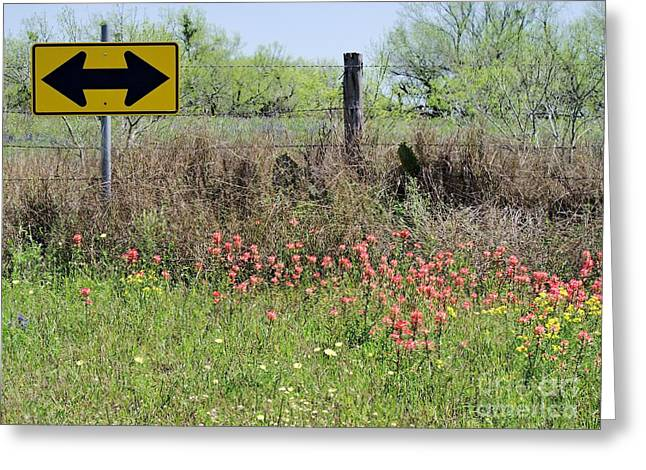 Which Way Greeting Cards - This Way to Wildflowers Greeting Card by Gary Richards