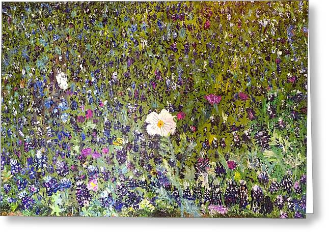 Pallet Knife Greeting Cards - White Prickly Poppy at Bluebonnet Hill at the San Antonio Botanical Gardens Greeting Card by Julene Franki