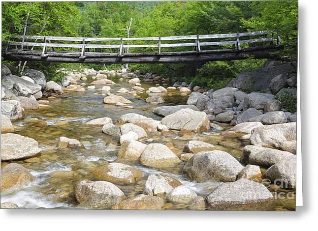 Thoreau Falls Trail - Pemigewasset Wilderness New Hampshire Greeting Card by Erin Paul Donovan