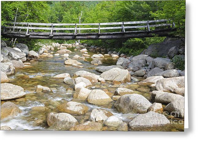 Fall River Scenes Greeting Cards - Thoreau Falls Trail - Pemigewasset Wilderness New Hampshire Greeting Card by Erin Paul Donovan