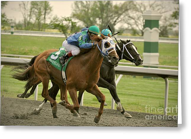 Thoroughbred Racing Greeting Card by Samantha Windham