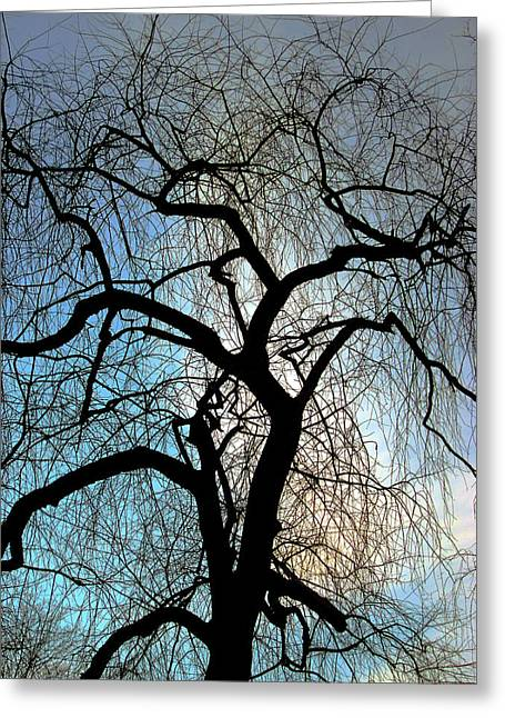 Many Greeting Cards - Those Gnarled Branches Greeting Card by Guy Ricketts