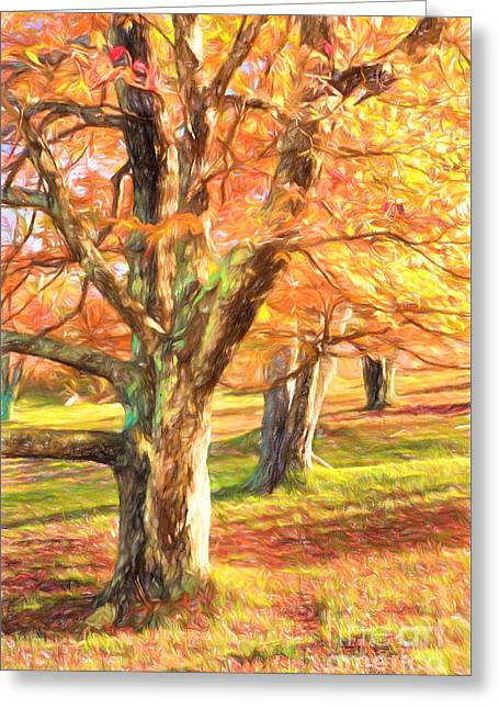 Fall Photos Paintings Greeting Cards - Three Amigos III Greeting Card by Dan Carmichael