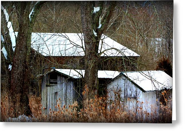 Old Rug Greeting Cards - Three Barns Greeting Card by Susie Weaver