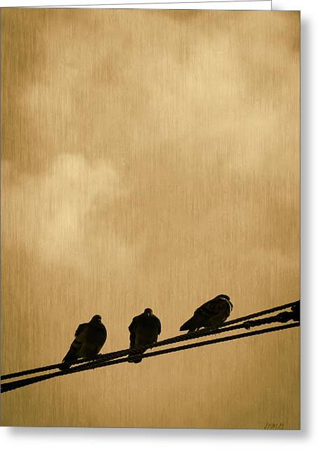 Three Birds On A Wire Greeting Card by Dave Gordon