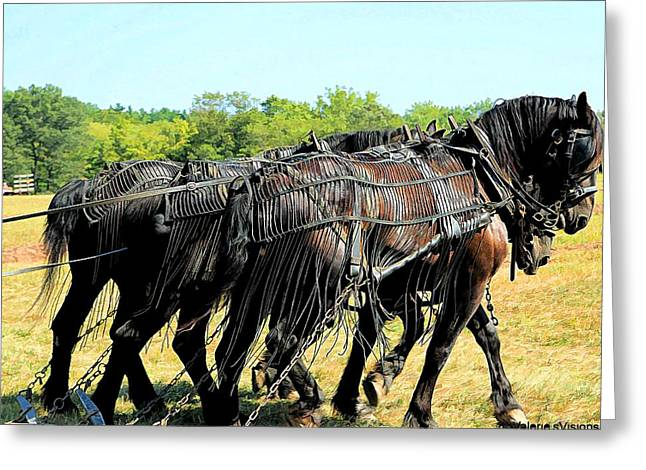 Recently Sold -  - Stein Greeting Cards - Three Blacks. Plow horses. Greeting Card by Valerie Stein