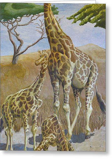 Giraffe Drawings Greeting Cards - Three Giraffes Greeting Card by Dominic White
